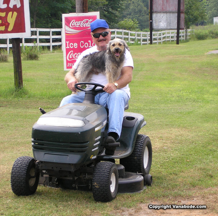 riding lawn mower and dog in alabama picture