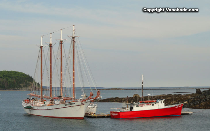 sail and tall ships in bar harbor