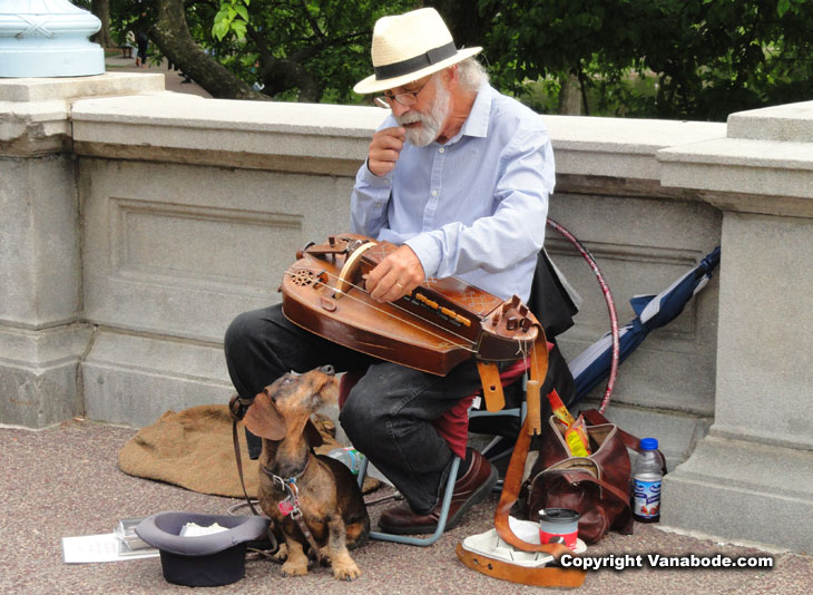 boston street musician and his chick magnet dog