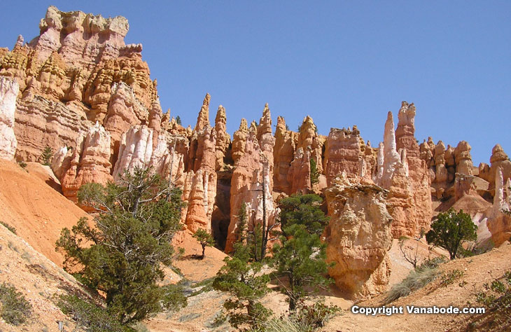 picture taken on bryce canyon national park hike