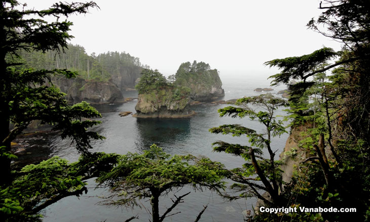 picture taken at cape flattery washington