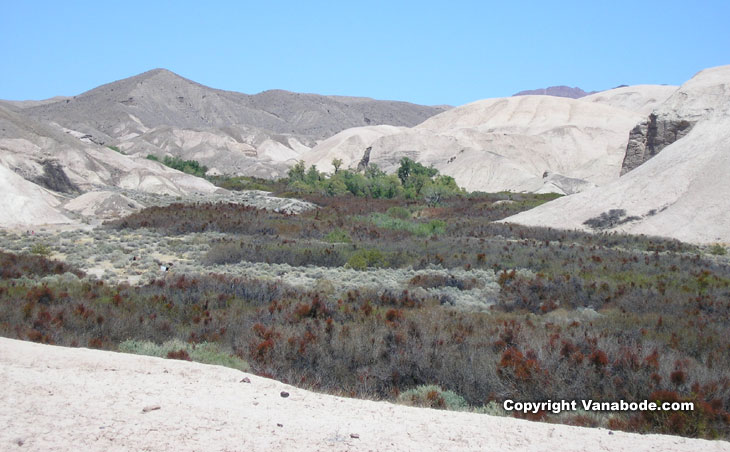 Picture of china ranch tecopa california