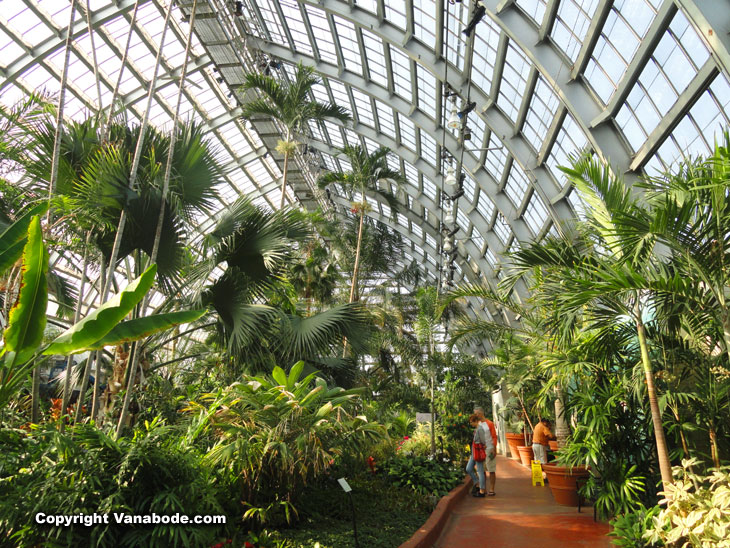 garfield conservatory botanical gardens place in chicago