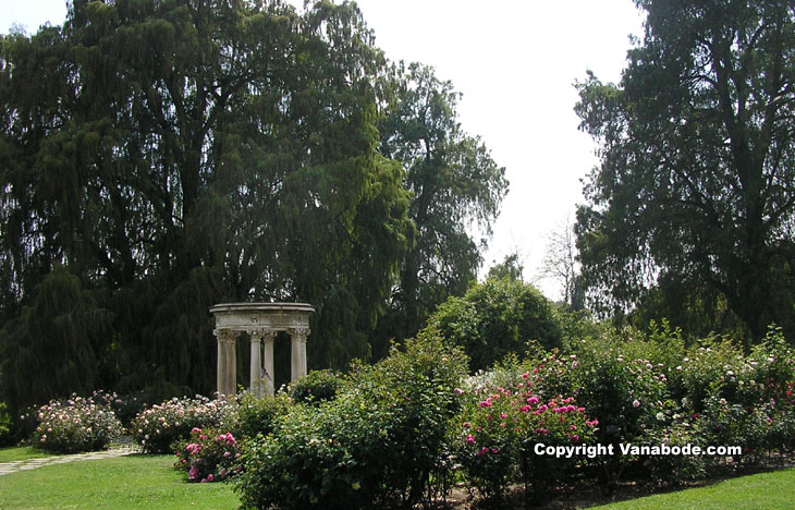 Rose garden at Huntington Library California picture
