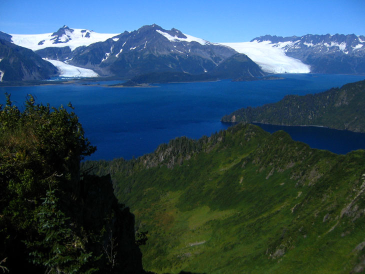 picture of the coast of the kenai fjords national park alaska