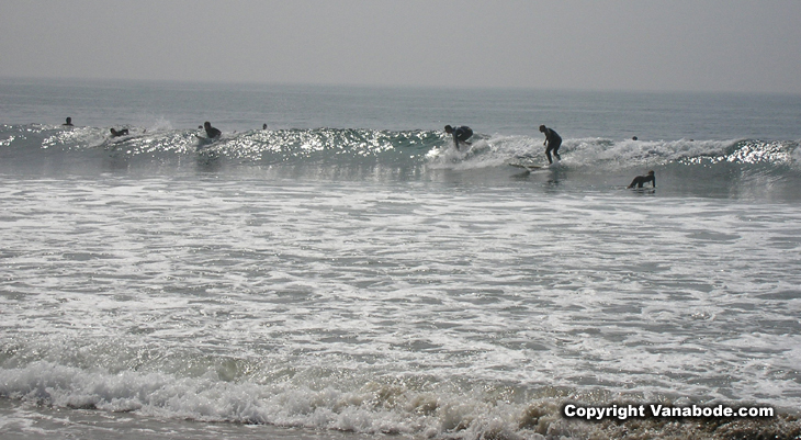 malibu beach surfers picture