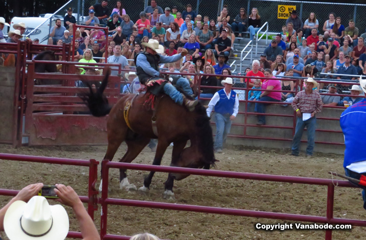 Washington County fair and rodeo