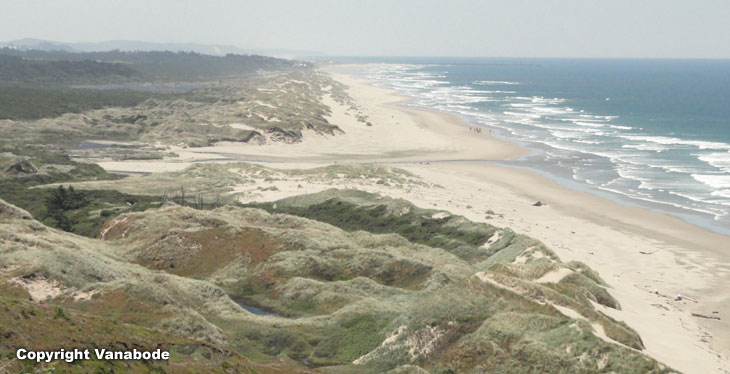picture of oregon dunes national recreation area in florence