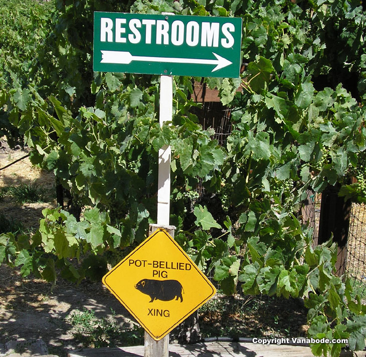 Sign at Paso Robles winery  picture