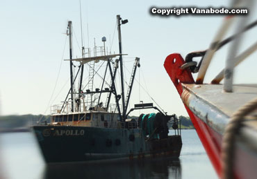 new bedford commercial fishing fleet