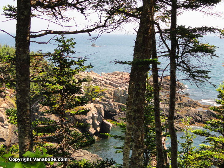 quoddy head cliff views of ocean