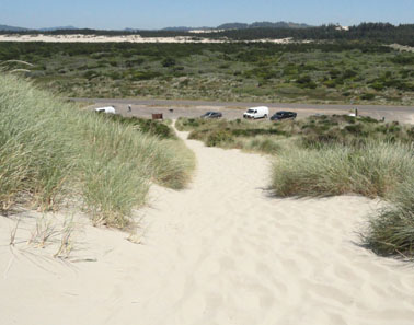 overlooking acres of dunes national recreation area picture