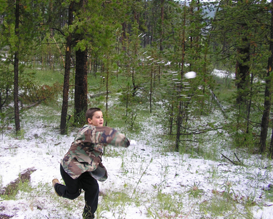 yellowstone national park snow fight picture