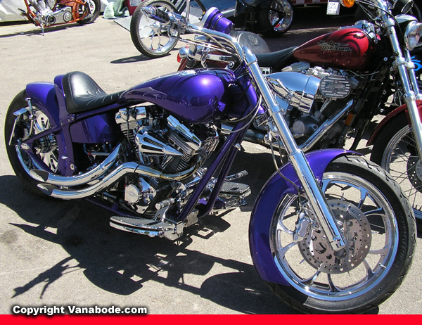 sturgis purple cycle picture