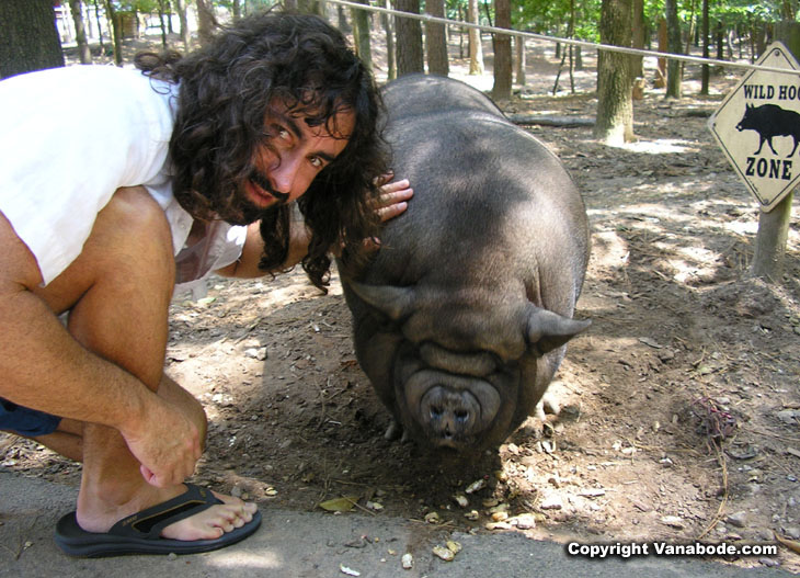 picture of jason and pot belly pig at tanglewood petting farm in buford georgia