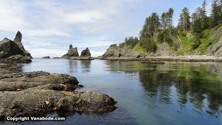 washington coast image