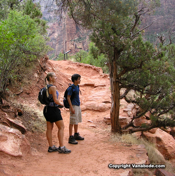 hikers on emerald pools trail picture